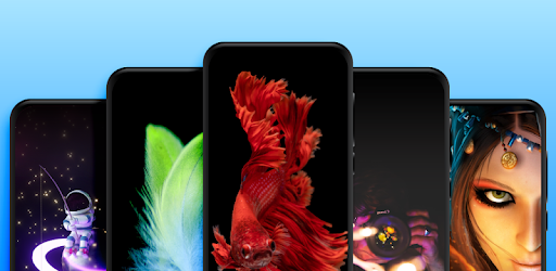 Live Wallpapers – Video Wallpapers v1.1.3 (Mod)