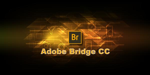 Adobe Bridge CC 2021 v11.0.0.83 (x64) (Cracked)