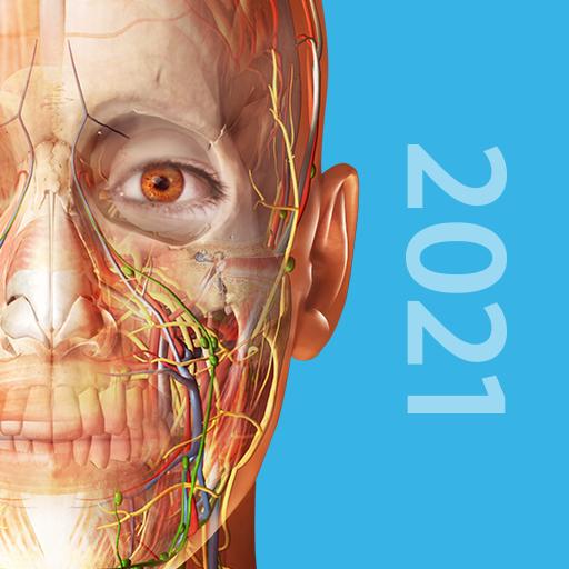Human Anatomy Atlas 2021: Complete 3D Human Body 2021.1.68 (Mod) (Paid)