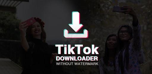 Video Downloader for TikTok – No Watermark 1.0.62  (Ad Free)